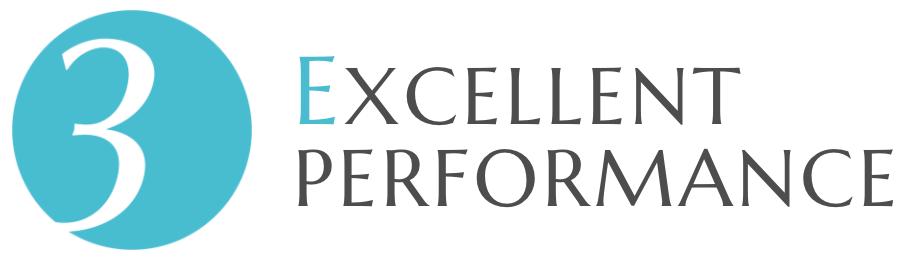 3.EXCELLENT PERFORMANCE